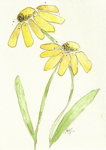 A Couple of Yellow Flowers