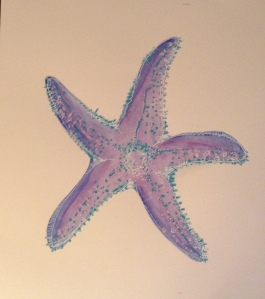 The original Sea Star 0 purple and blue.